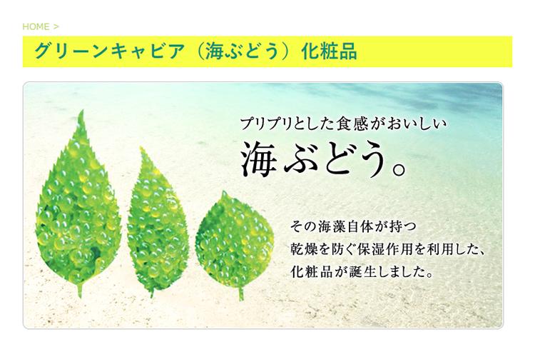 グリーンキャビア(海ぶどう)化粧品