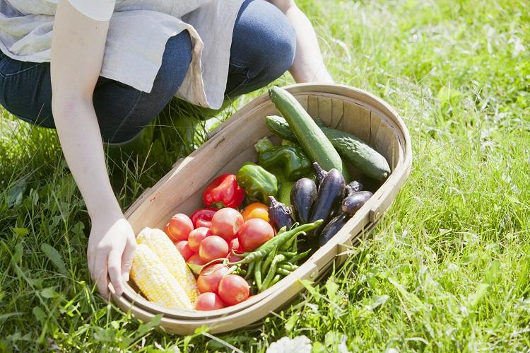 地方創生でオリジナルの健康食品を開発