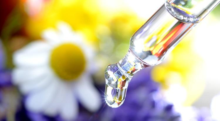 植物エキスの保湿効果について解説