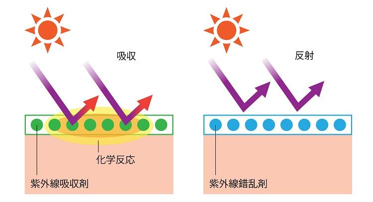 紫外線吸収剤と散乱剤それぞれの防御作用について