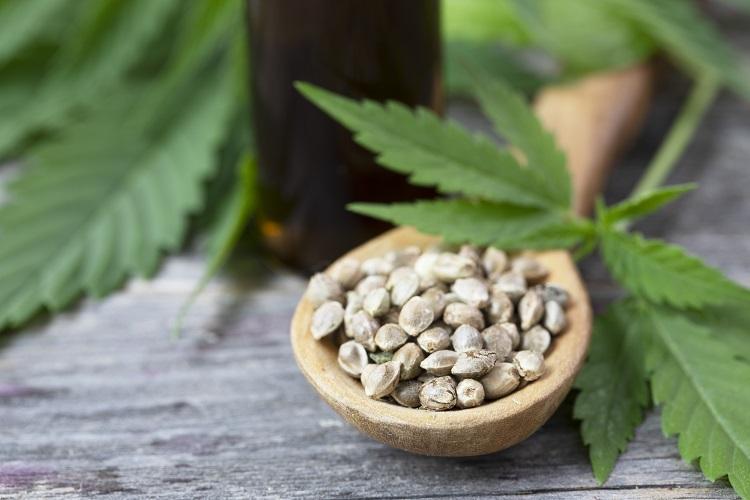 全麻成分を自然に含む方が有益