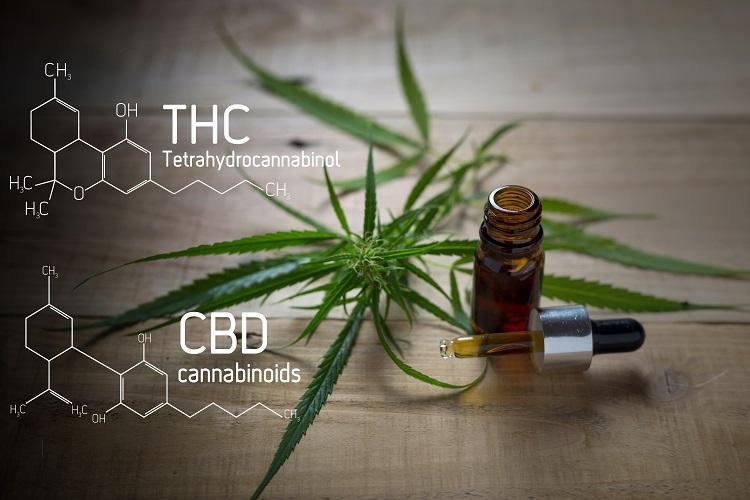 THCがわずかでも検出されれば違法