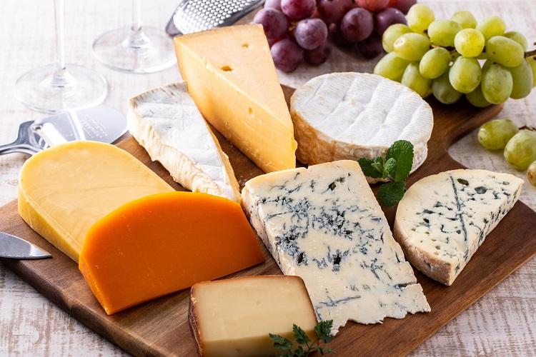 チーズは動物性乳酸菌