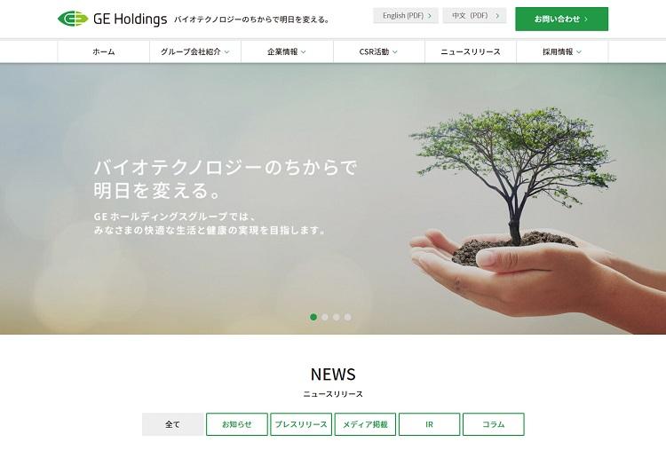 株式会社GEホールディングス