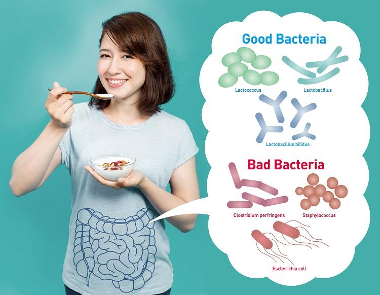善玉菌といわれる乳酸菌とは